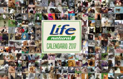 calendario 2017 club amici di life