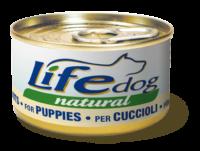 dog-cuccioli_new-copia